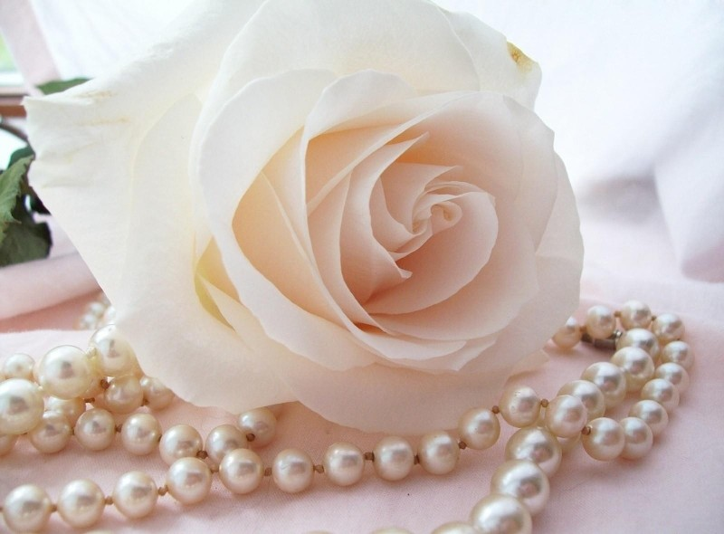 rose_flower_bud_tenderness_beads_pearls_close-up_38086_1600x1180