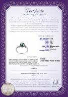 product certificate: AK-B-AAA-67-R-Andrea