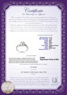 product certificate: AK-W-AAA-67-R-Andrea