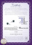 product certificate: B-AAA-657-E-Akoy