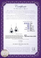 product certificate: FW-B-AA-1011-E-Nichelle