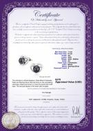 product certificate: FW-B-AA-78-E-Katie