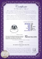 product certificate: FW-B-AAA-1112-R-Wendy