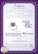 product certificate: FW-B-AAA-89-R-Anais