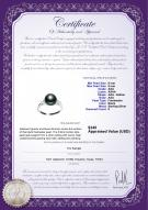 product certificate: FW-B-AAA-89-R-Dacey