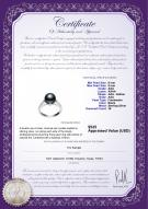 product certificate: FW-B-AAA-89-R-Erica