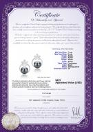 product certificate: FW-B-AAAA-78-E-Molly