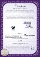 product certificate: FW-B-AAAA-78-L1