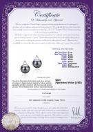 product certificate: FW-B-AAAA-89-E-Africa