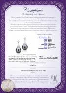 product certificate: FW-B-AAAA-89-E-Eiffer-Tower
