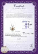 product certificate: FW-P-AA-910-P-Marlina