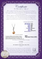 product certificate: FW-P-AAA-910-P-Clementina