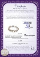 product certificate: FW-W-A-1011-B