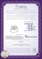 product certificate: FW-W-AAA-1112-R-Wendy