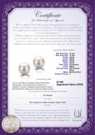 product certificate: FW-W-AAAA-1011-E-Berry