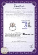 product certificate: FW-W-AAAA-1011-R-Billy