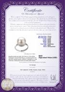 product certificate: FW-W-AAAA-1011-R-Tindra