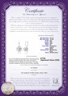 product certificate: FW-W-EDS-1213-E-Blenda