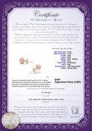 product certificate: P-67-E