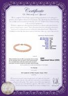 product certificate: P-AA-67-B