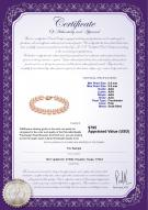 product certificate: P-AAA-89-B