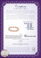 product certificate: P-AAAA-89-B
