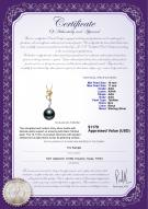 product certificate: TAH-B-AAA-1011-P-Brianna