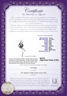 product certificate: TAH-B-AAA-1011-P-Florence