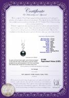 product certificate: TAH-B-AAA-1011-P-Virginia