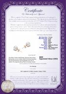 product certificate: W-AAA-758-E-Akoy