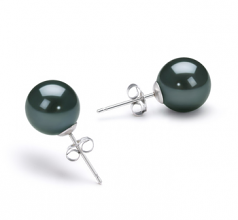 8-9mm AA Quality Japanese Akoya Cultured Pearl Earring Pair in Black