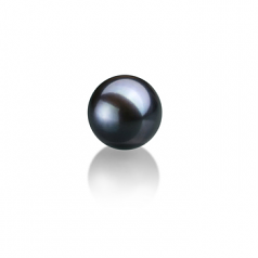 7-8mm AAAA Quality Freshwater Loose Pearl in Black