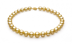 11.5-15.2mm AAA+ Quality South Sea Cultured Pearl Necklace in Gold