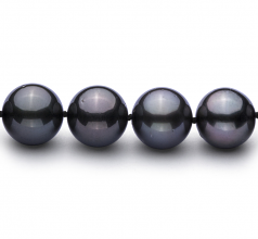 11.1-11.9mm AAA Quality Tahitian Cultured Pearl Necklace in Black