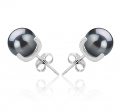 7-8mm AAAA Quality Freshwater Cultured Pearl Earring Pair in Britt Black