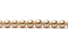 9.2-12.8mm AA Quality South Sea Cultured Pearl Necklace in 18-inch Gold