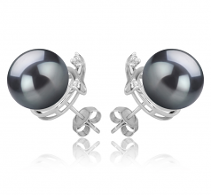 10-11mm AAA Quality Tahitian Cultured Pearl Earring Pair in Berry Black