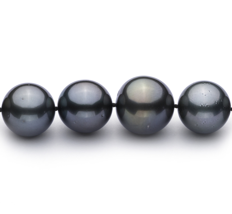 13.1-16mm AAA+ Quality Tahitian Cultured Pearl Necklace in Black