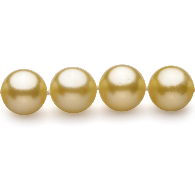 PearlsOnly - Gold 9-11.7mm AAA Quality South Sea 14K Yellow Gold Cultured Pearl Necklace