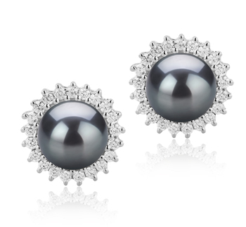 7-8mm AAAA Quality Freshwater Cultured Pearl Earring Pair in Dreama Black