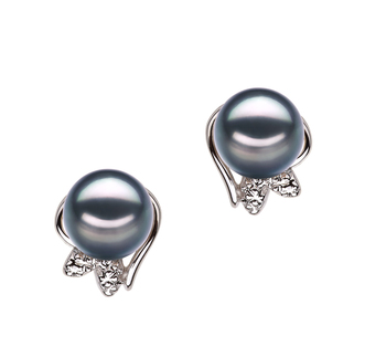 6-7mm AA Quality Japanese Akoya Cultured Pearl Earring Pair in Jodie Black