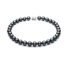 Black 12-12.93mm AAA Quality Tahitian 14K White Gold Cultured Pearl Necklace