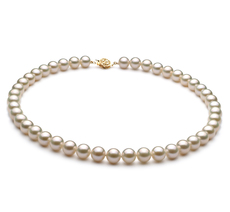 PearlsOnly - White 8-9mm AAA Quality Freshwater 14K Yellow Gold Cultured Pearl Necklace